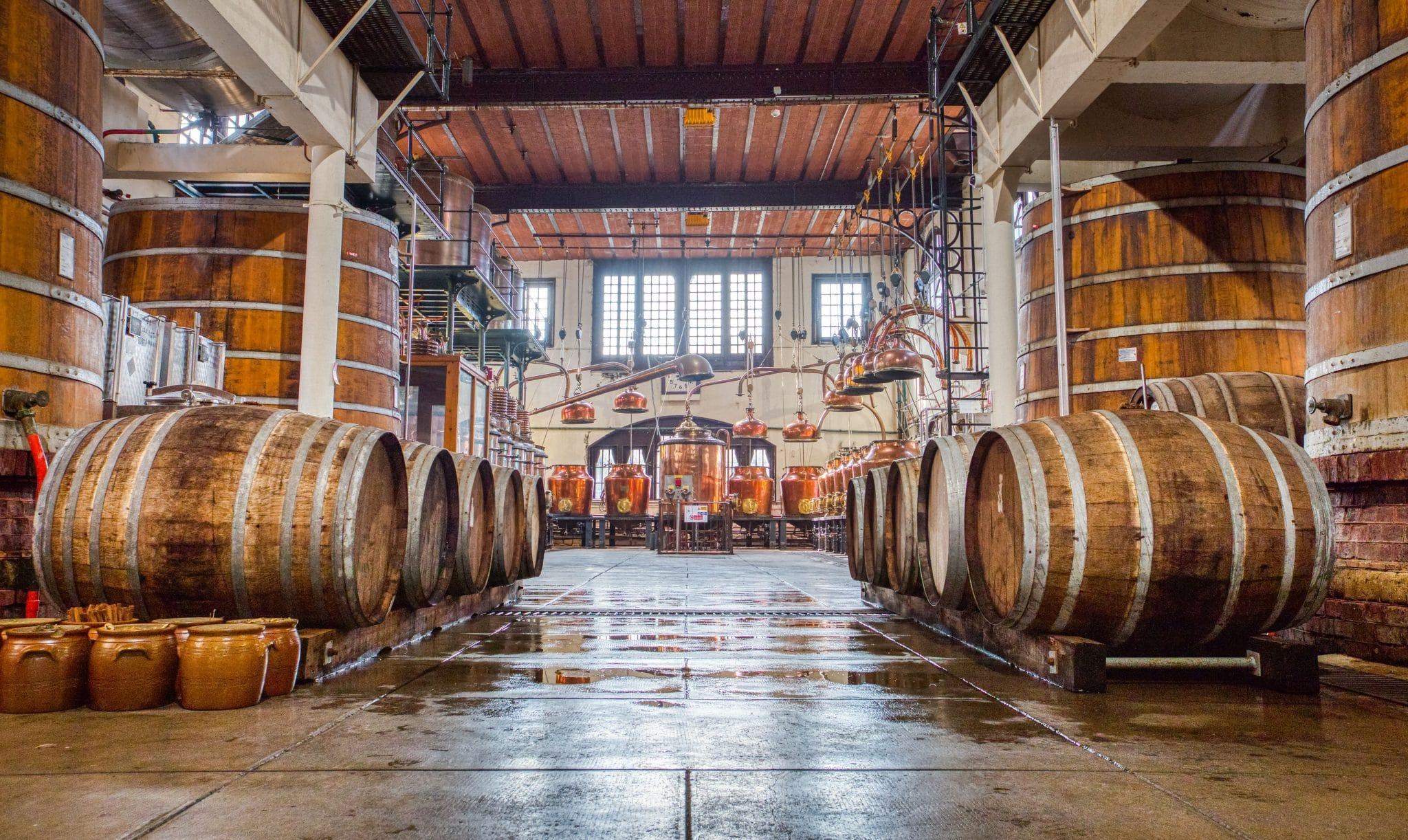 palais bénédictine visite dégustation atelier mixologie paris alcool digestif alambics histoire culture patrimoine