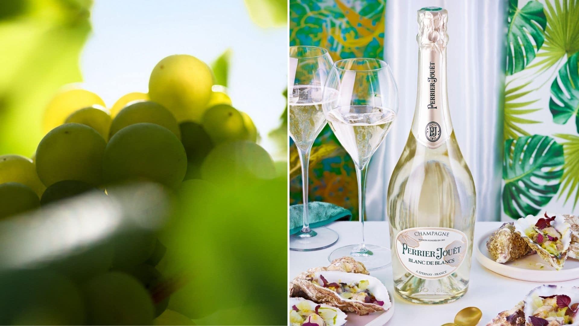 dégustation champagne chardonnay séverine frerson perrier jouet blanc de blancs