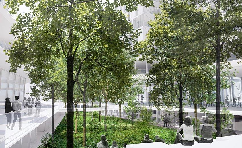 Paris : la première «Forêt urbaine» va voir le jour à Montparnasse !