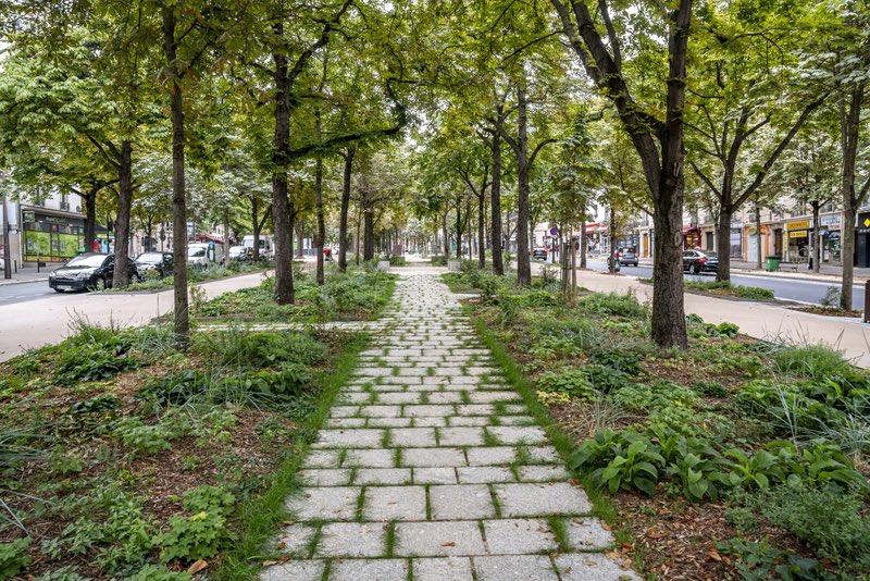 Première Forêt urbaine Montparnasse
