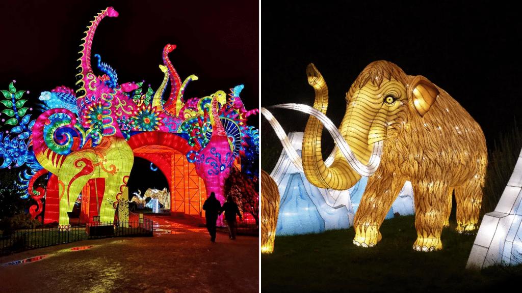 L'évolution en voie d'illumination Festival Lumières Jardin des Plantes 2021