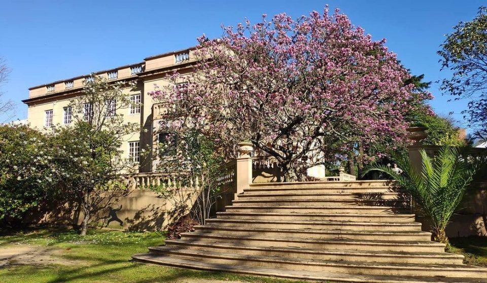 Jardins perfeitos para um passeio romântico a dois