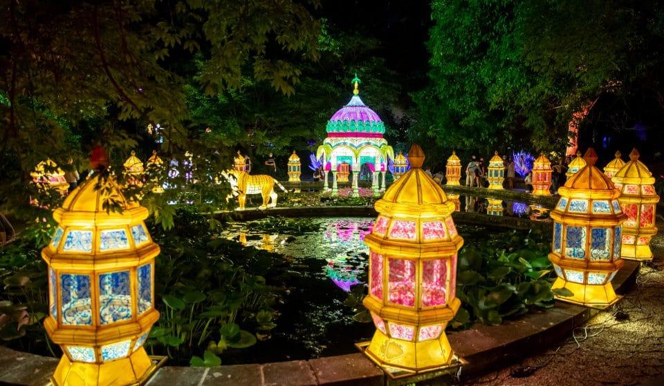 O Jardim Botânico enche-se de luz e cor para uma experiência sensorial interativa