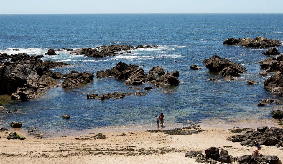 Todas as praias do Porto têm bandeira azul