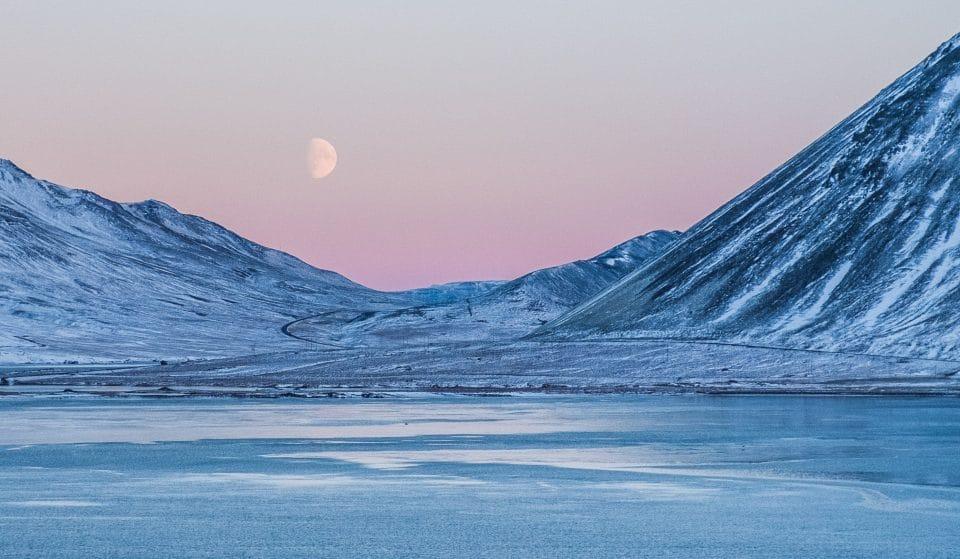 Sous les glaces avec Mario Cyr : cette exposition immersive vous fera découvrir l'Arctique !