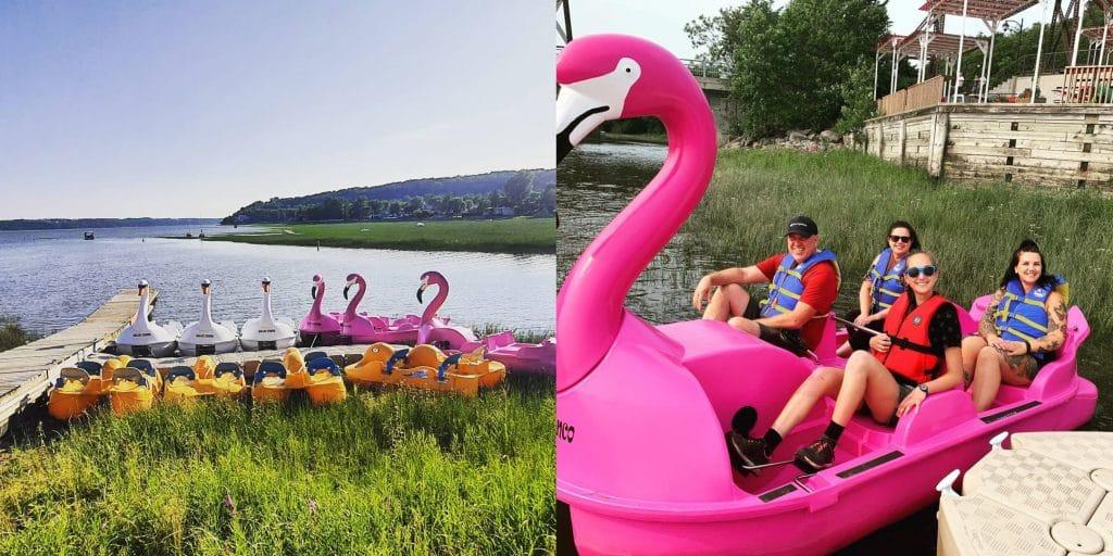 Faites un tour de pédalos gratuit dans un flamant rose géant!