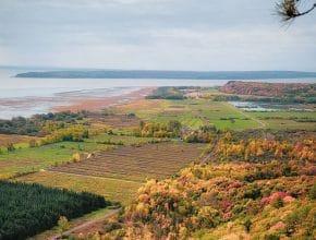 Cette randonnée à 40 minutes de Québec vous fera voir les couleurs de l'automne