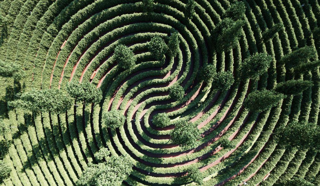 Parque-da-Distância-um-jardim-para-caminhar-onde-não-te-cruzas-com-ninguém-@Studio-Precht-1