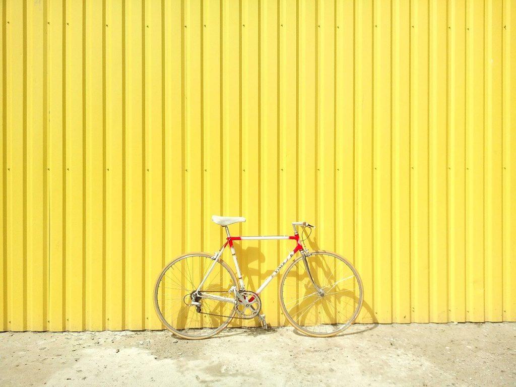 dia mundial da bicicleta: passeio por são paulo