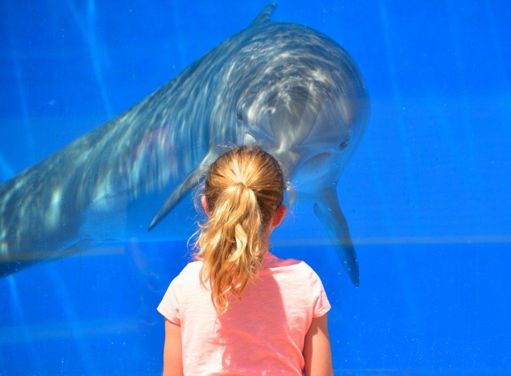 aquario de sao paulo