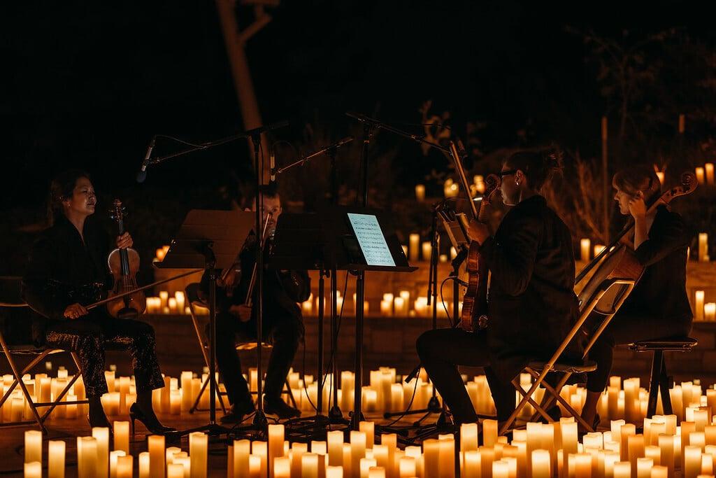 candlelight premium garden