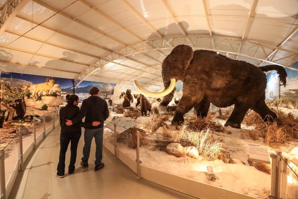 Zooparque Itatiba museu história natural
