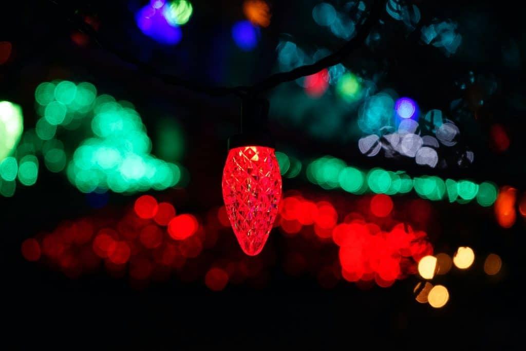 luminna fest