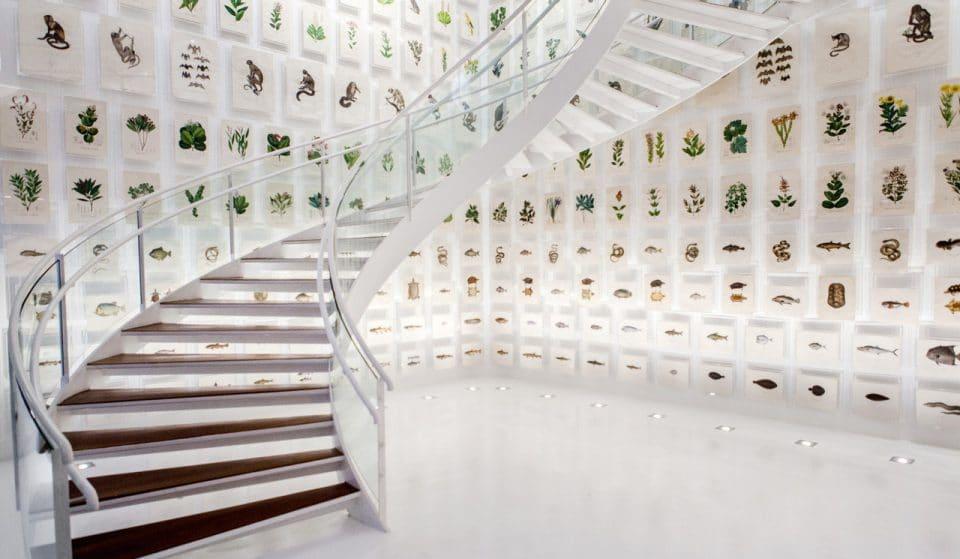 Dia Internacional dos Museus: 10 espaços para visitar de graça em SP