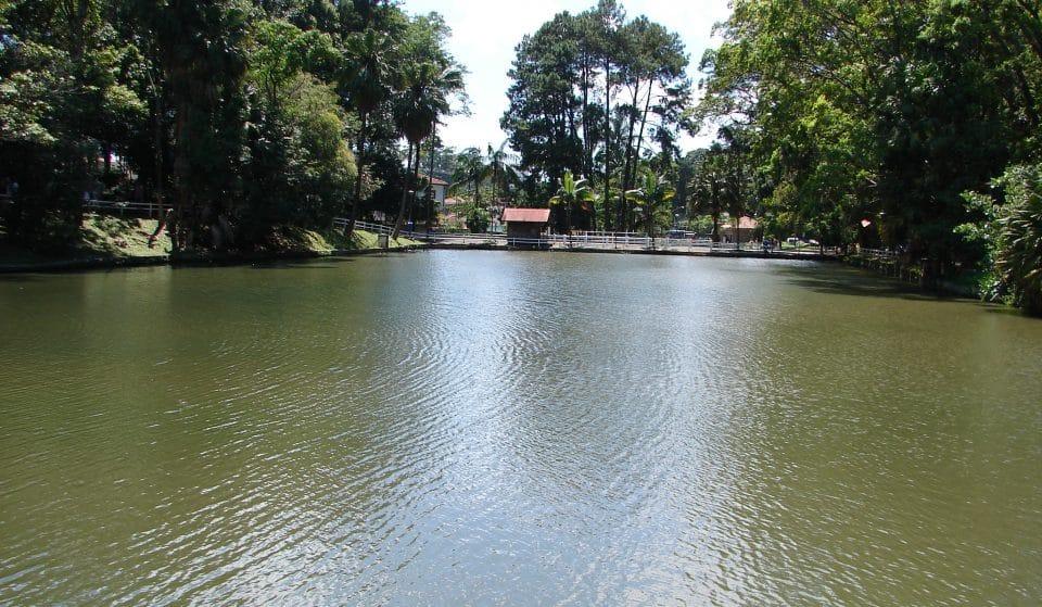 Horto Florestal Secreto: 6 motivos para visitar o parque na ZN