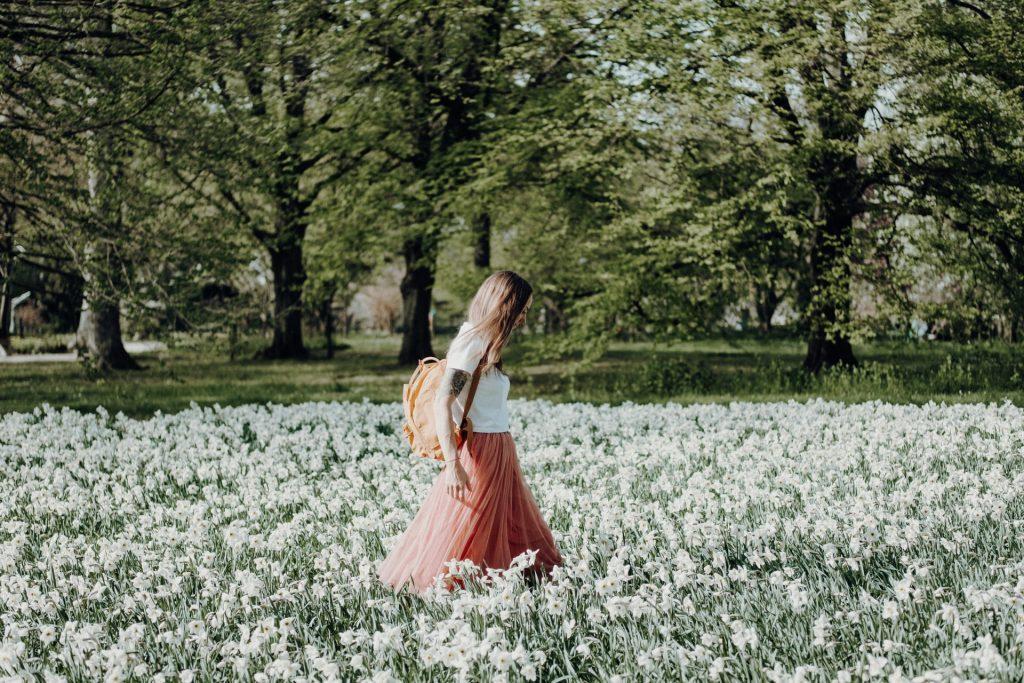 passeios primavera sp