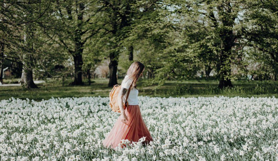 Despertar da primavera: 5 programas floridos para aproveitar a estação