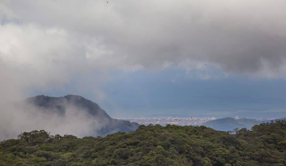 Sabia que dá para ver o mar sem sair da capital? Conheça o Parque Estadual Serra do Mar