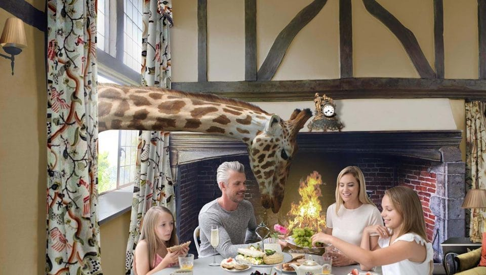 A Hotel Where Guests Dine Next To Giraffes Is Set To Open In The UK