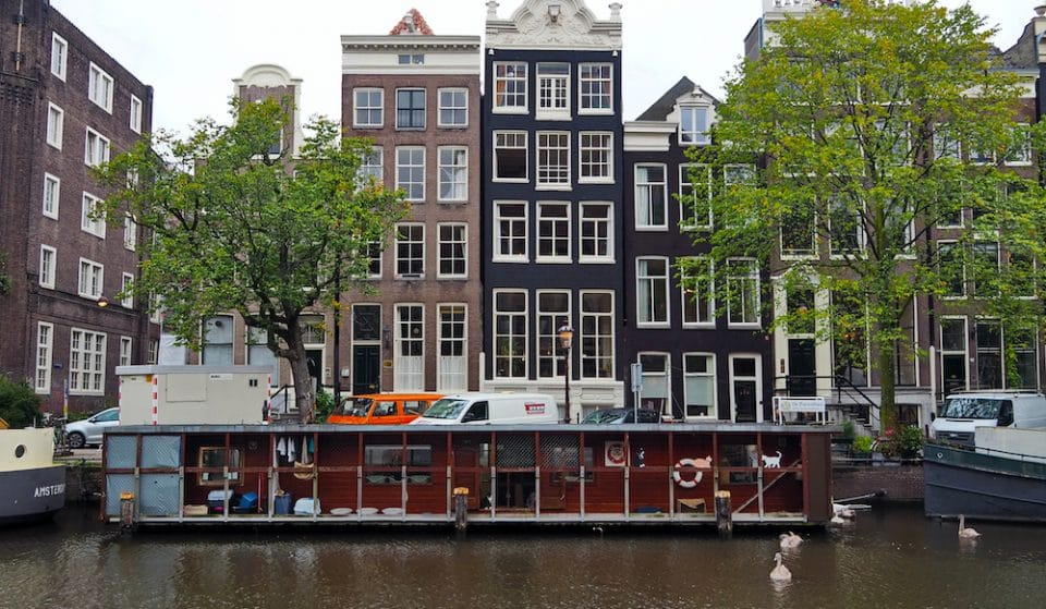 There's A Floating Cat Sanctuary On Amsterdam's Picturesque Canals • De Poezenboot