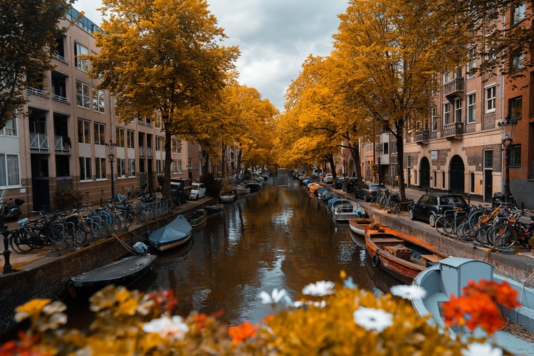 10 Amazing Photos Of Amsterdam In The Autumn