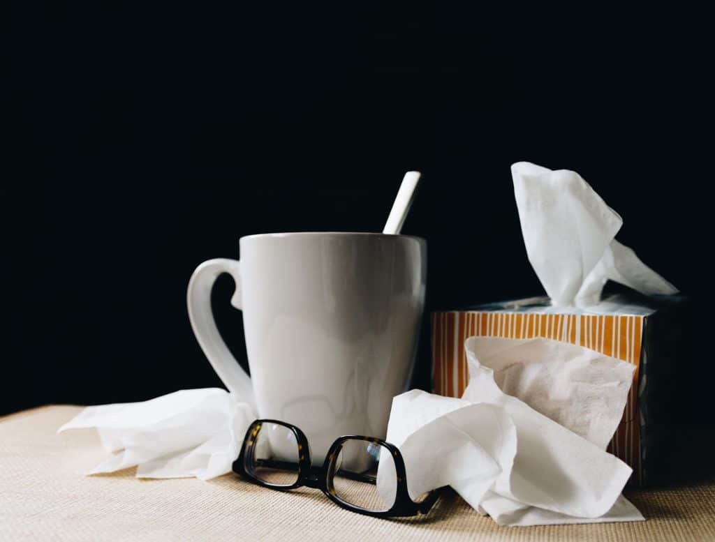 Zero Cases of Flu Have Been Recorded This Winter In The Netherlands
