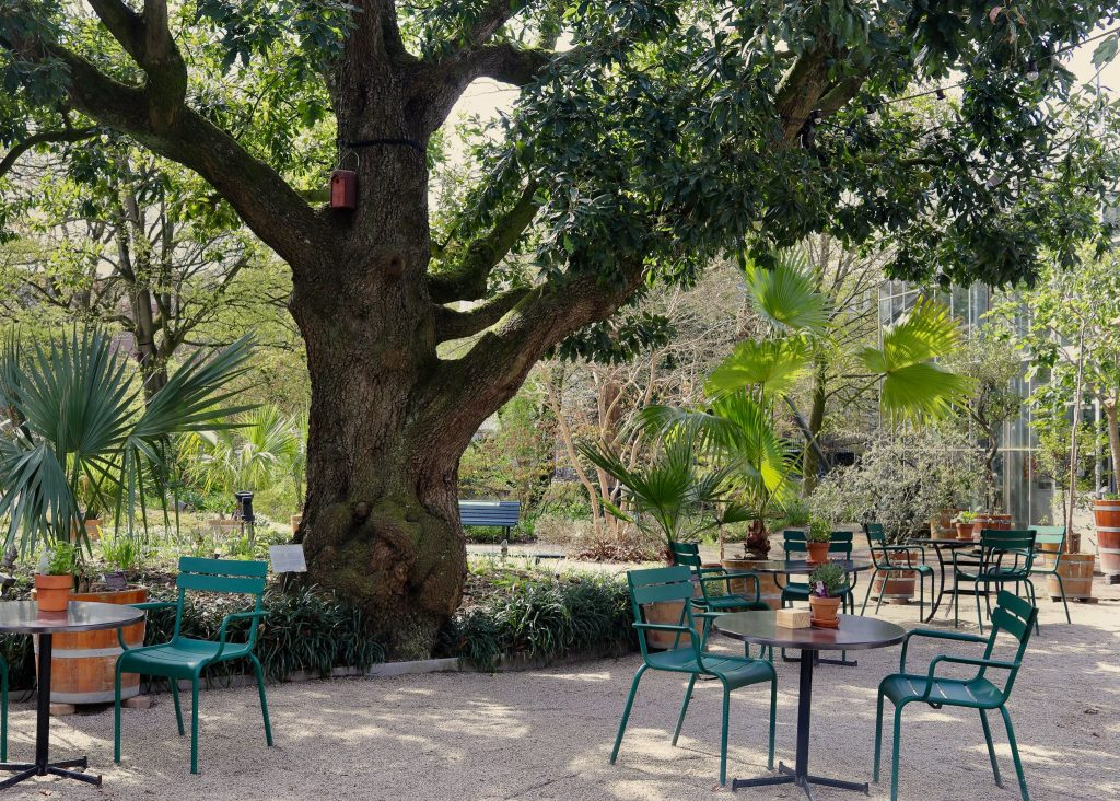 8 Quiet And Leafy Spots In Amsterdam To Take Some Time Out And Relax