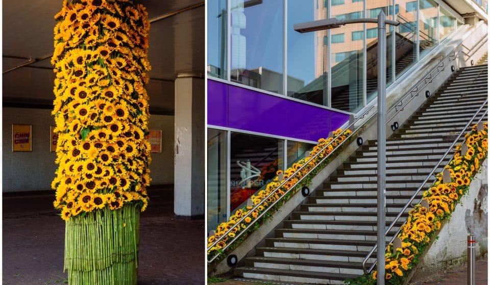 Stunning Sunflower Installations Have Popped Up Around Amsterdam