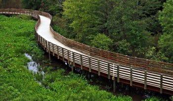 Hike, Bike, Or Skate To The Alabama Border On Atlanta's Epic Silver Comet Trail