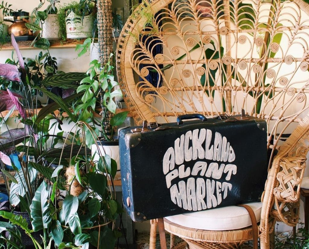 A Huge Plant Market Is Heading Back Into Auckland Next Week