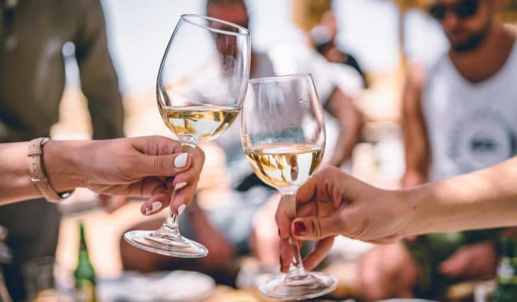 Pinot Palooza 2021 Is Coming To Auckland This Winter