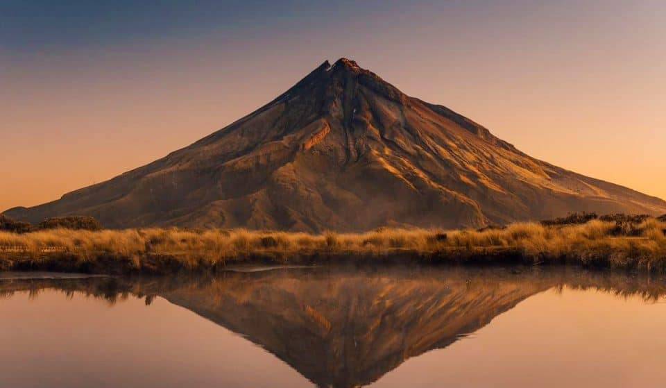 19 Reasons Why New Zealand Is The Best Country To Live On Earth