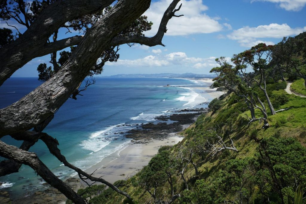 Auckland Spring Day Trips
