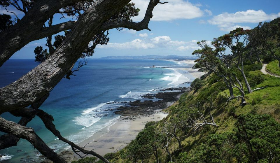 10 Wonderful Spring Day Trips To Take From Auckland After Lockdown