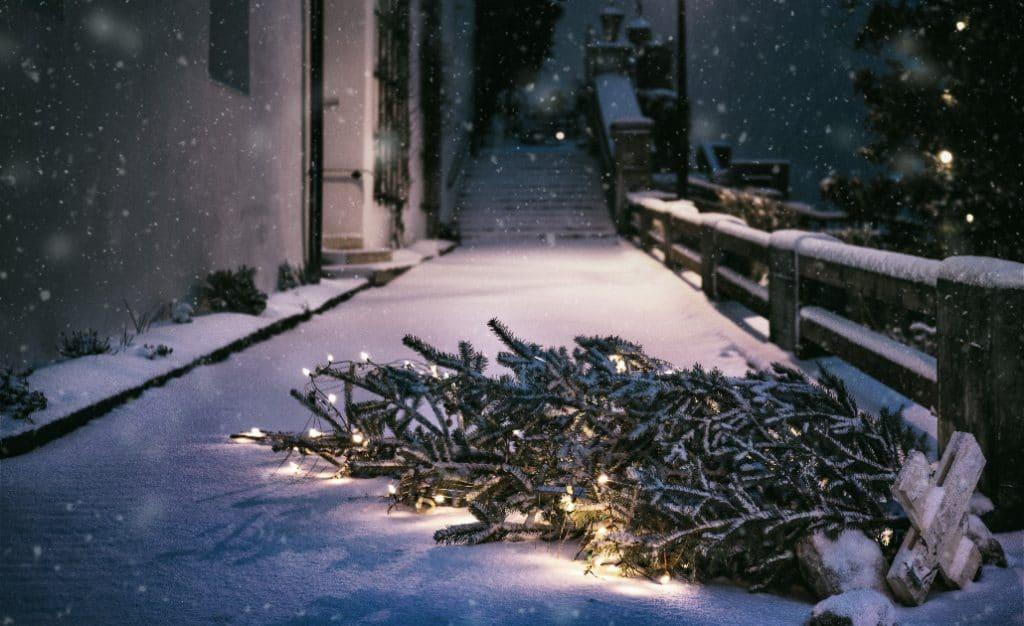Es schneit in der Hauptstadt: unsere Highlights von Berlin im Schnee