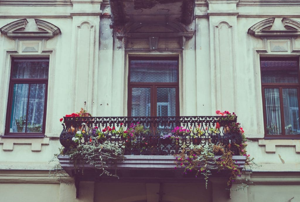 So macht ihr euren Balkon bienenfreundlich