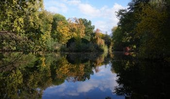 5 schöne Seen im Berliner Umland