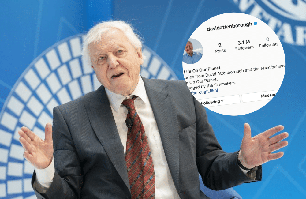Sir David Attenborough Has Broken The Record For The Fastest User To Hit One Million Instagram Followers