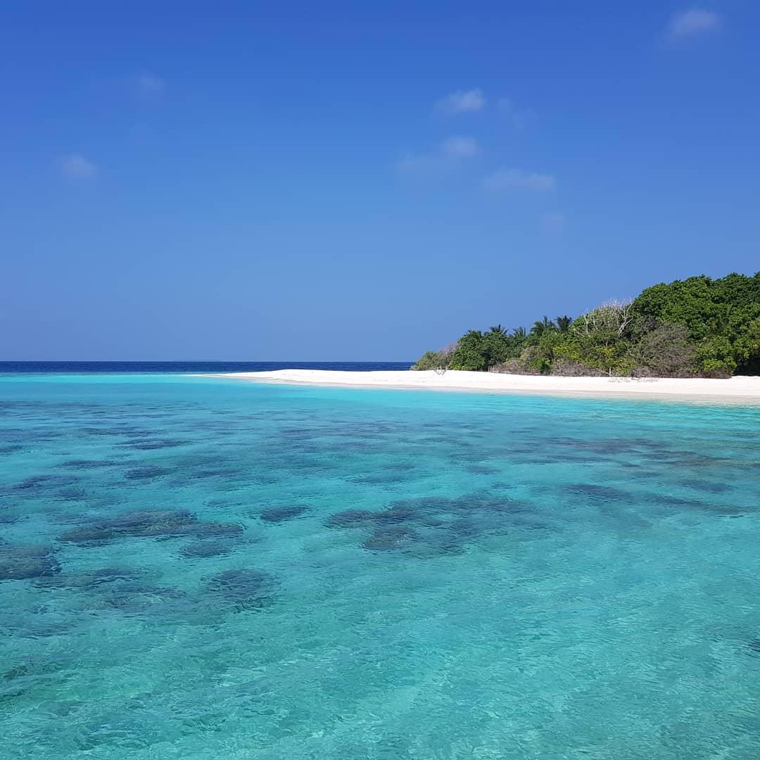 barefoot bookseller maldives ocean