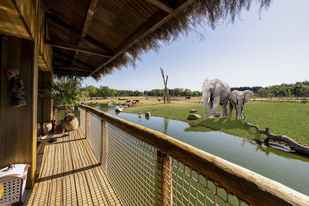 safari lodges WMSP