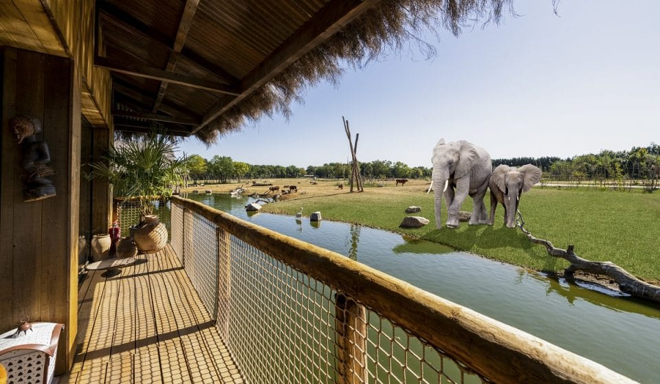 You Can Now Stay Overnight In These Amazing Lodges At West Midland Safari Park