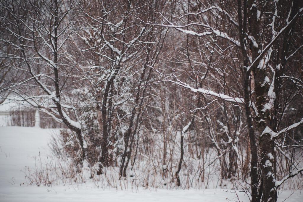 birmingham-snow