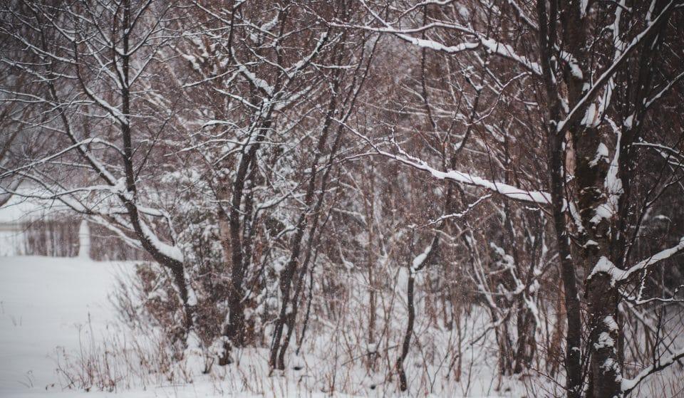 10 Photos Of Birmingham Looking Stunning In The Snow This Week