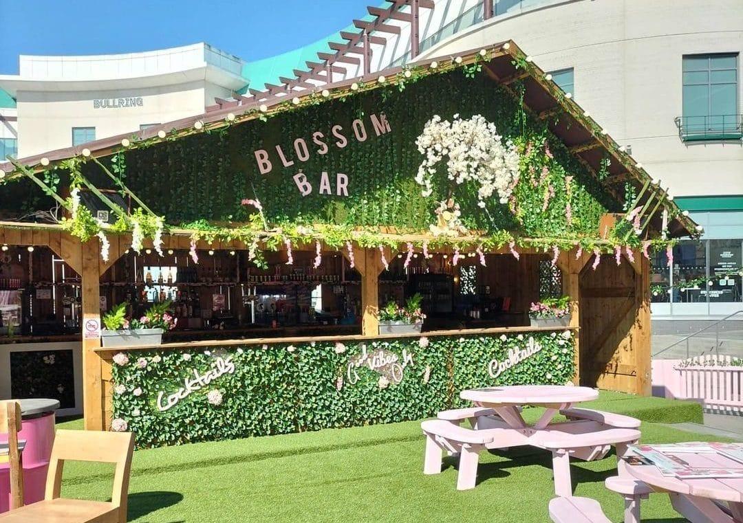 blossom bar hut