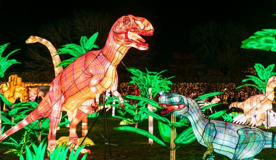 West Midland Safari Park Is Getting A Glow Up With A New Lantern Festival Coming This Autumn