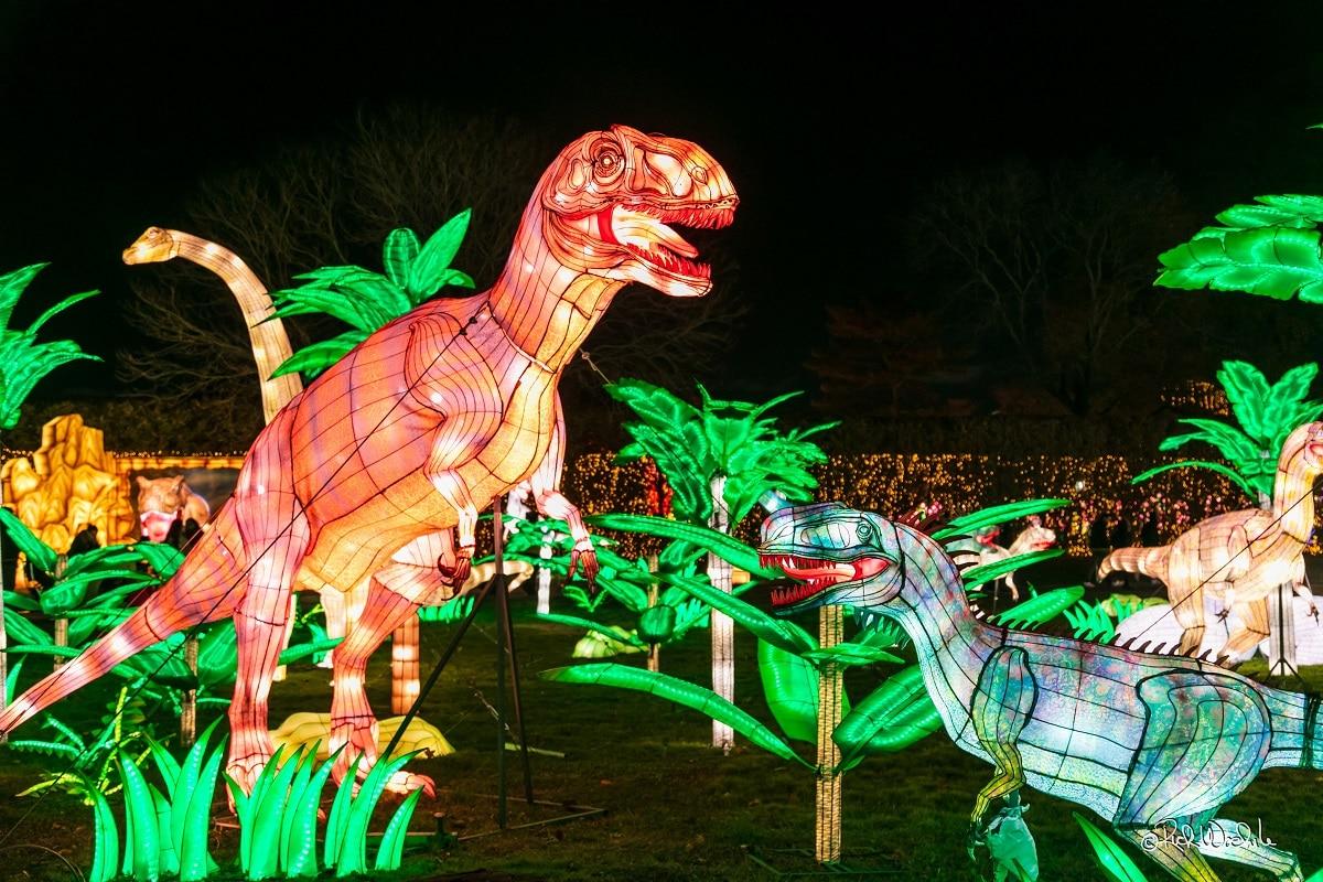 west-midland-safari-park-lantern-festival
