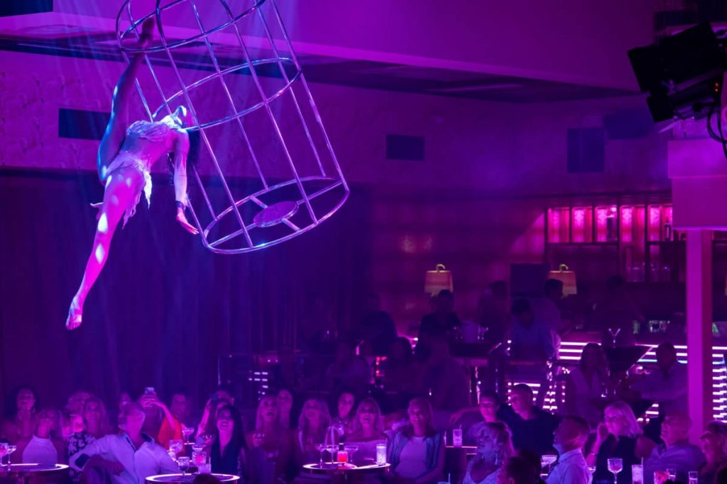 Flock To The Pink Flamingo On The Gold Coast And Be Blown Away By These Phenomenal Stage Shows