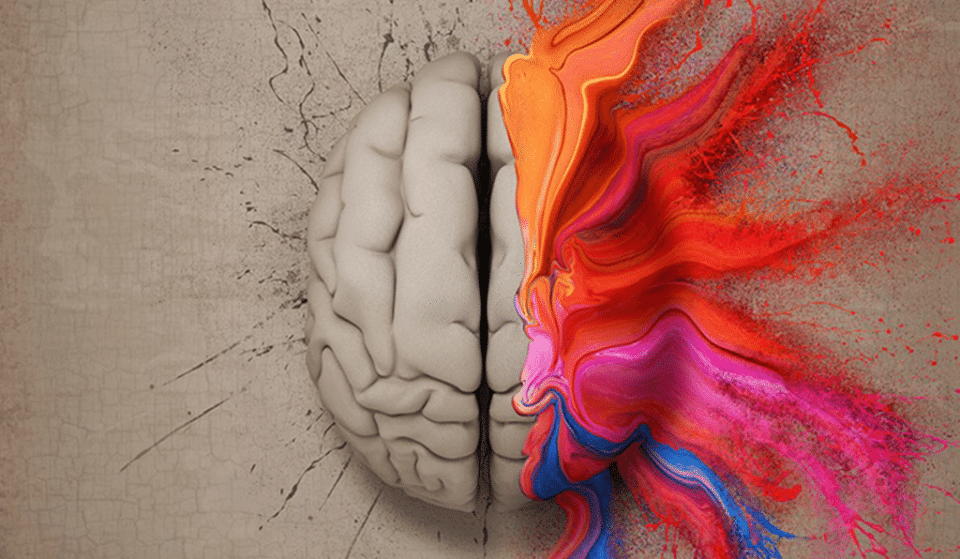 This Fascinating Talk Explores The Science Of Psychedelics