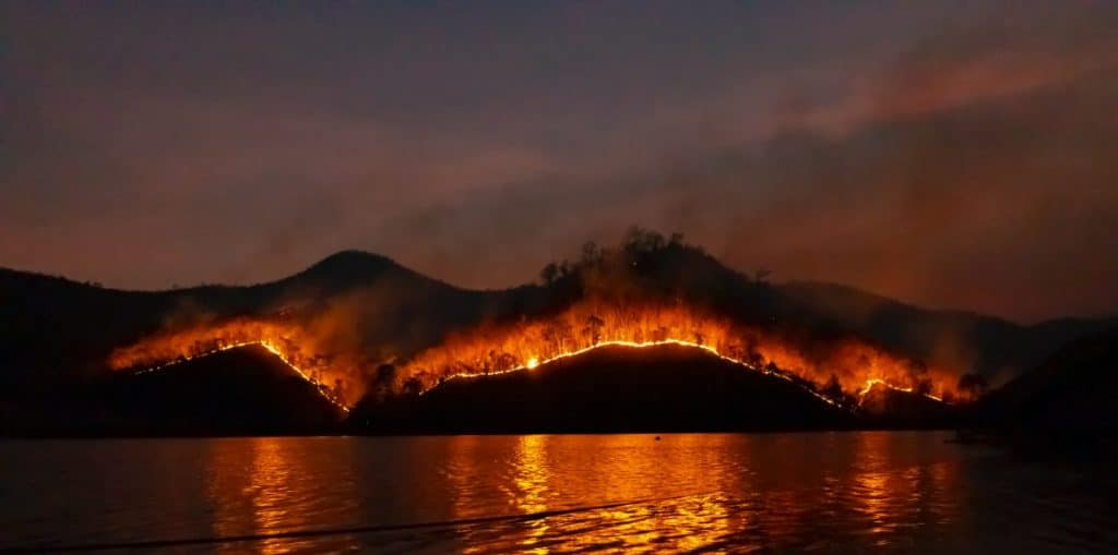forest-fire-nasa-hottest-year-2020