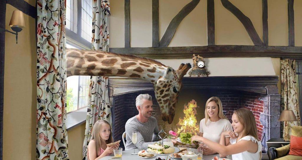 giraffe-hotel
